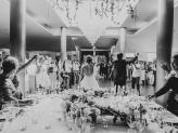 Festa de casamento na Quinta da Quintã - Quinta da Quintã