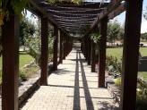 Jardim - pergúla flores - Quinta das Abertas