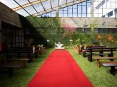 Casamento no jardim interior - Encantos de Coimbra