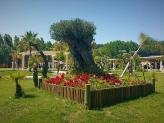 Quinta do Paul