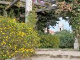 Jardim - Quinta Pinhal das Confreirias