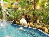 Jardim interior da Sala Lago das Palmeiras - Quinta do Palácio Rauliana