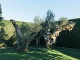 Zona Exterior - Quinta do Avesso
