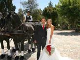 Charrete  - A.Veiga Casamentos Mágicos