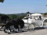 Charrete Princesa II - A.Veiga Casamentos Mágicos