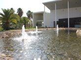 Água límpida no lago da Quinta das Acácias - Quinta das Acácias