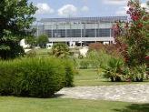 Vista do jardim para o edifício  - Quinta do Mourão by Narcisu's
