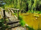 Lago dos Peixes - Quinta do Mourão by Narcisu's