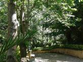 Espaços verdes  - Quinta do Palhal