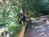 Espaços livres de lazer e fotos - Quinta do Palhal