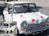 Mini Antigo  - Carros Clássicos Rita Catita