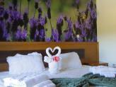 Cada quarto tem uma paisagem diferente da nossa região!  - Hotel Rural Senhora das Pereiras